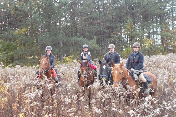 Private Horse Riding near Budapest with lunch and transport