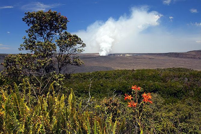 Shore Excursion - Hawaii Volcano Tour