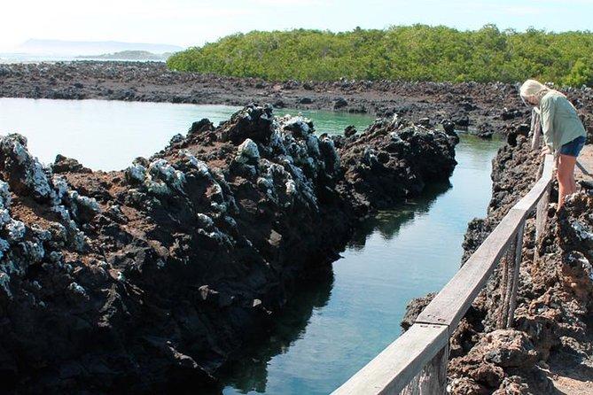 Isabela Island Explorer 3 days 2 nights