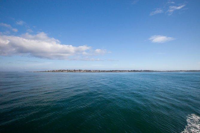 Transferts de Robben Island depuis et vers l'hôtel. Arrêtez-vous dans des endroits surprenants!