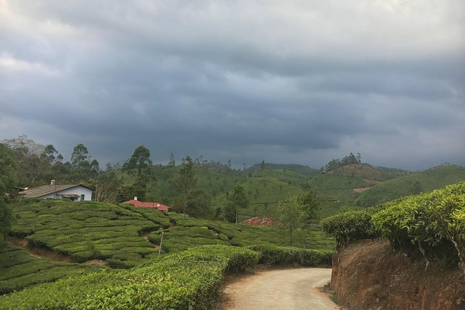 2 Days in Munnar- Short Tour