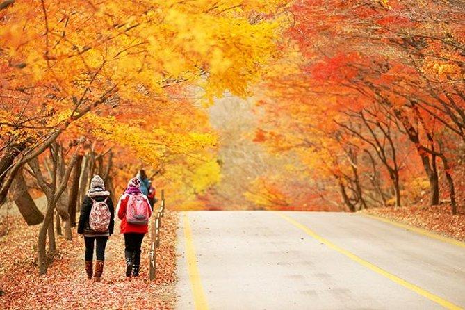 Autumn 3 days Jeonju&Mt. Naejansan&Seoul on 4-12 Nov