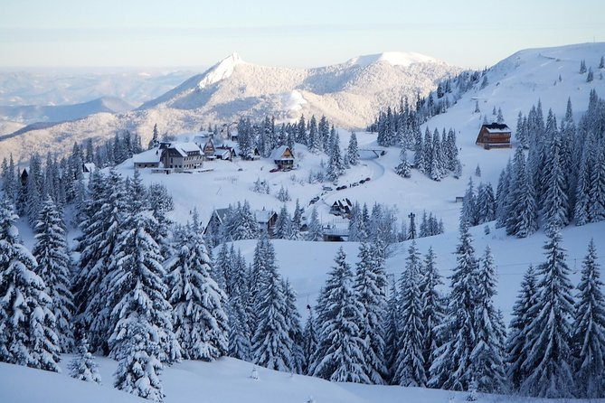 Magnificent Olympic Mountain Tour