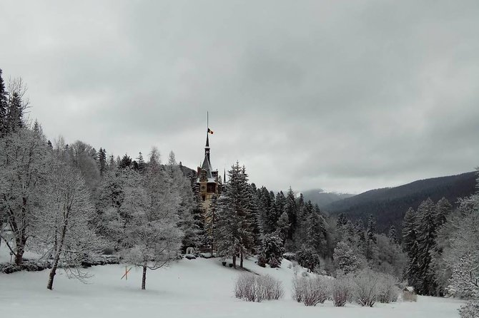 Full-Day Dracula Castle, Peles Castle and Râșnov Citadel Tour from Bucharest photo 3