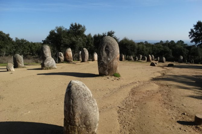 From Lisbon : Évora private tour - tickets included