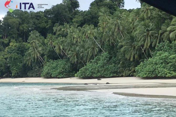 Underwater Magic at Coiba Island Panama
