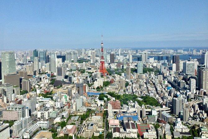 Tokyo full day sightseeing - custom tour