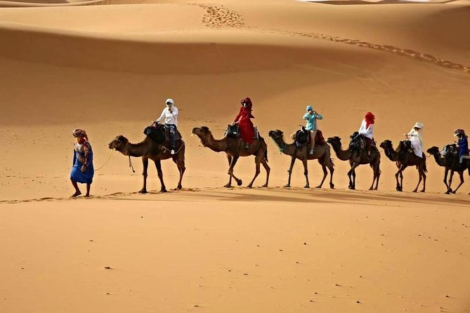 organizing trips and tours in morocco