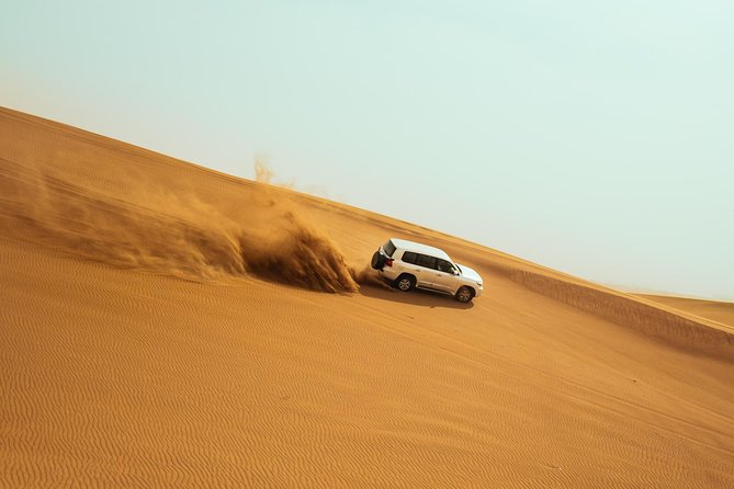 Dubai Desert Safari Private Tour photo 9
