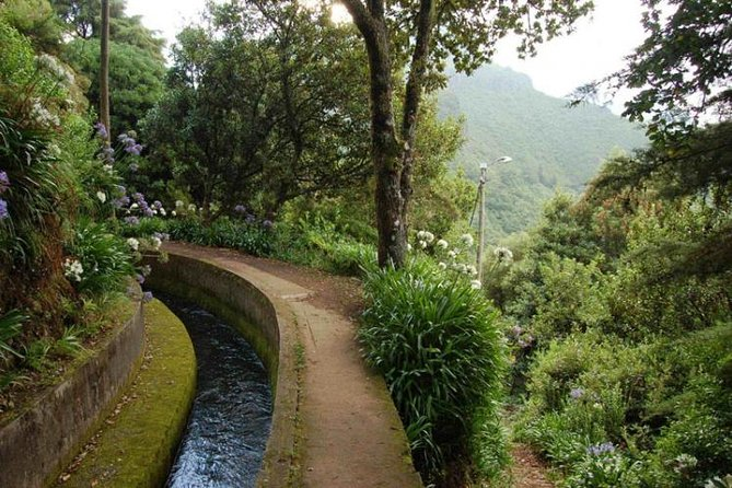 Levada Walk - do Norte