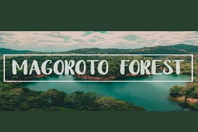 Day Trip to Magoroto Forest Estate - From Tanga City