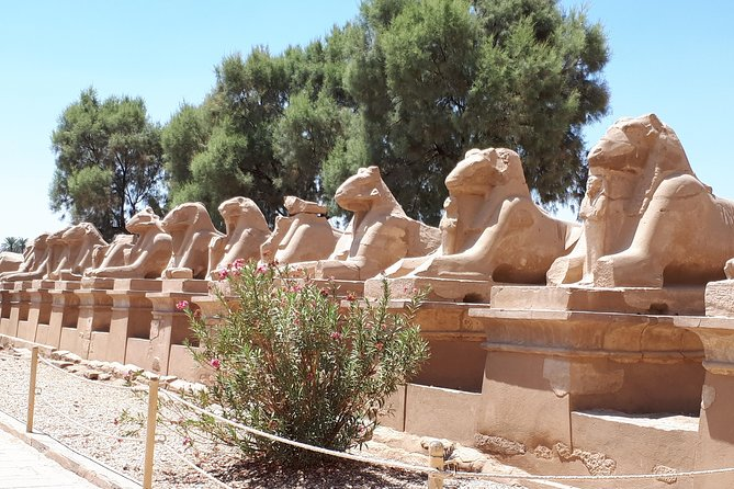Day Tour from Airport to Luxor Monuments Include Lunch Transfers Entry Guide photo 25