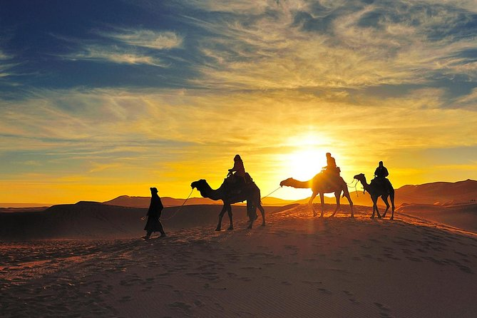 Sunset Camel Ride in Sahara Merzouga Desert Erg Chebbi Dunes photo 1