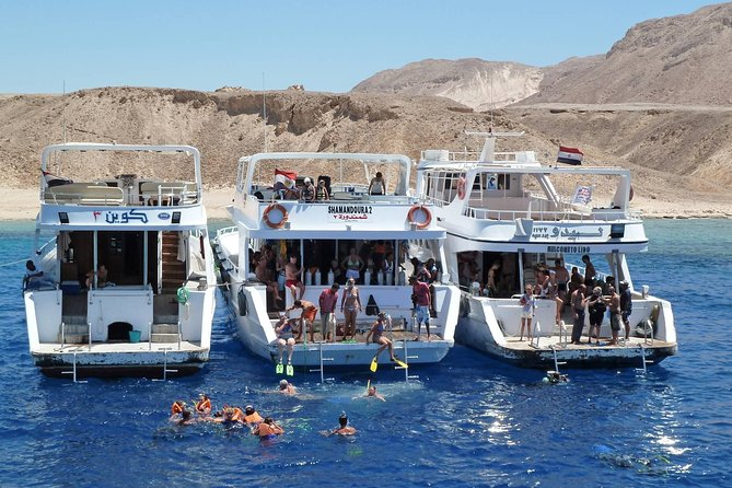Tiran Island full day snorkeling Sea trip- Sharm Elsheikh
