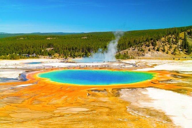 Exclusive Yellowstone Grand Teton Salt Lake City Tour