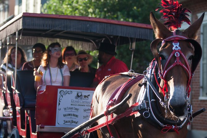 Cemetery and French Quarter Horse and Carriage Ride