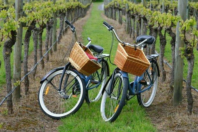 Mattituck rondleiding door boerderij en wijnland in New York