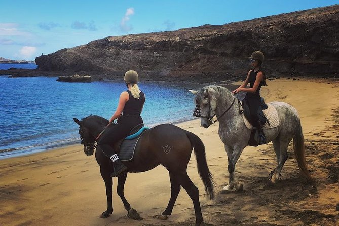 Beach Horse Riding Tour in Gran Canaria: 2 hours 30 minutes photo 2