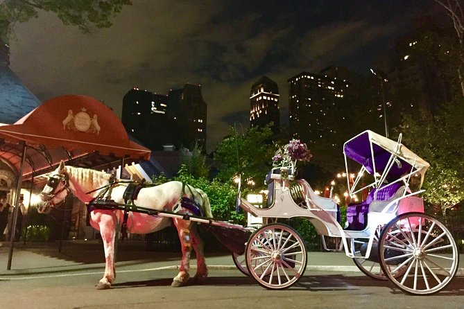 Private Carriage Ride in Central Park