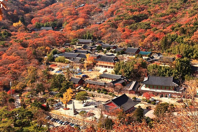Busan : Full-day trekking and spa relaxation tour by private van