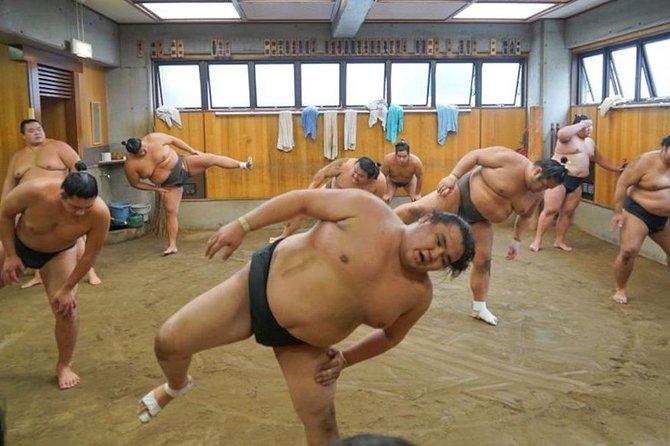 Ryogoku Sumo Morning Practice Tour in Tokyo