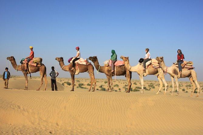 2 Days and 1 Night Camel Safari