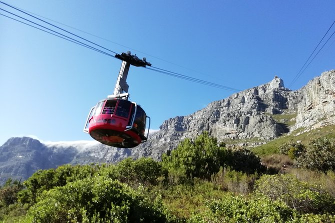 Table Mountain, Seal Island and Groot Constantia Wine Estate