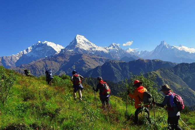 Mohare Danda Community Homestay Trek in Annapurna