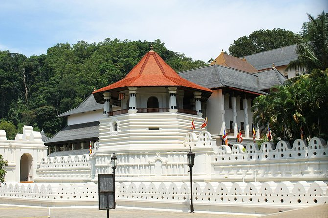 Kandy City tour from colombo or Negombo