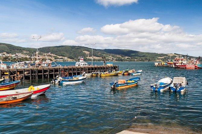 Premium Full day Tour to Chiloe, visiting Ancud & Pinguin Colony