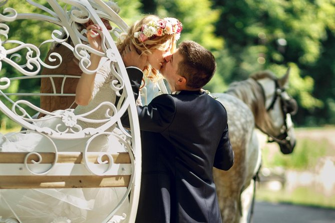Romantic Central Park Horse-Drawn Carriage Tour