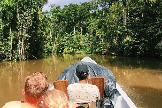 4-Day Cuyabeno Amazon Adventure
