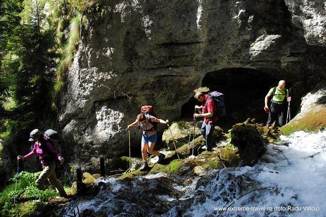 Adventure into the Wild Carpathia (5 days)