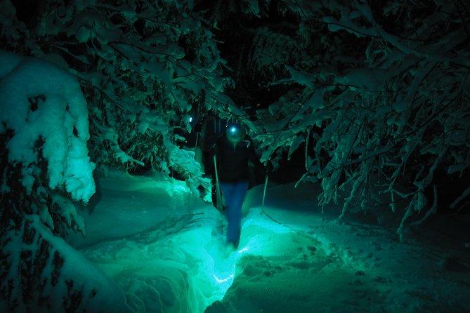 Colorful night snowshoe hike