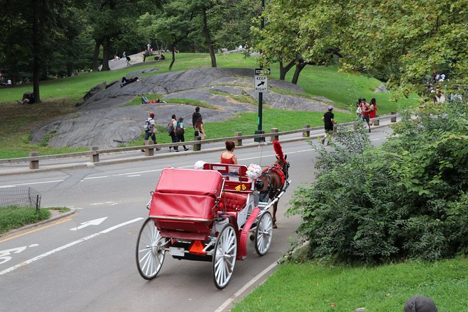 Standard Central Park Horse Carriage Ride (Long Loop - 45 Minutes)