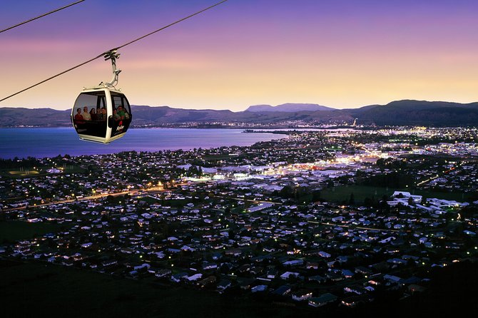 3-Day Wellington to Auckland Tour