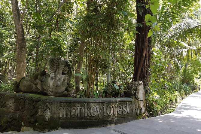 Ubud All Inclusive Sightseeing Tour