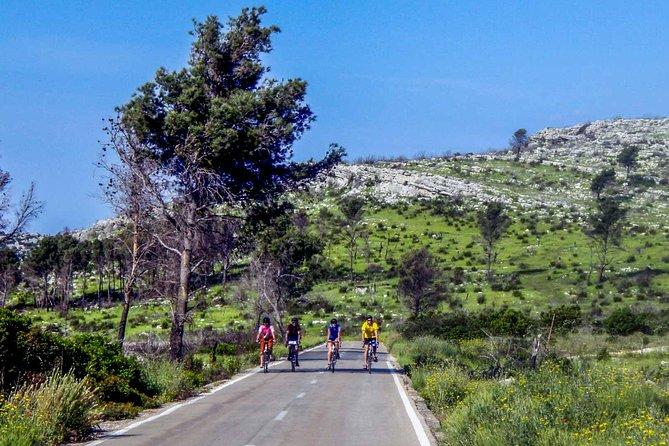 E-cycling Krka Circuit