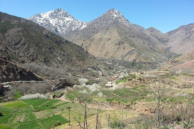 Full-Day Private Tour to Ourika Valley and Atlas Mountains from Marrakech