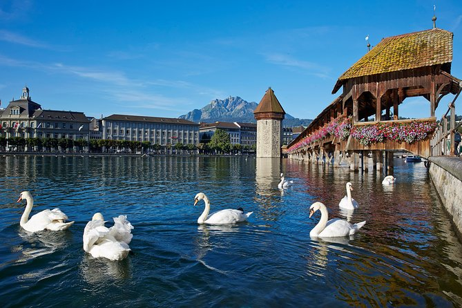 Lucerne Day Trip from Zurich Including Lake Lucerne Cruise photo 3