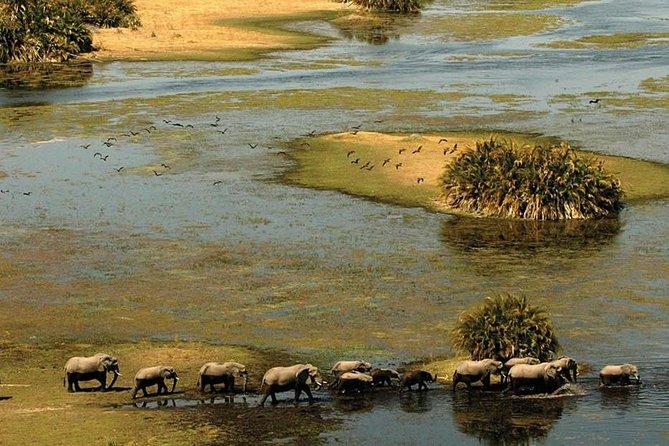 3 Day Chobe National Park Fully Catered Mobile Safari