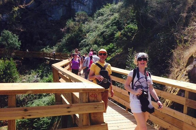 Eco tour tour to the Paiva Walkways