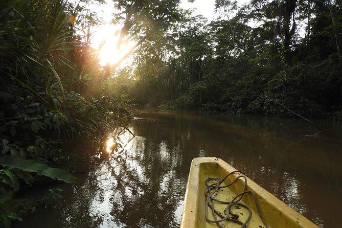 3 or 4 Day Amazon Napo Adventure