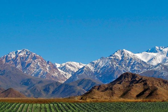 Private Uco Valley Tour including Lunch and Wine Tasting from Mendoza