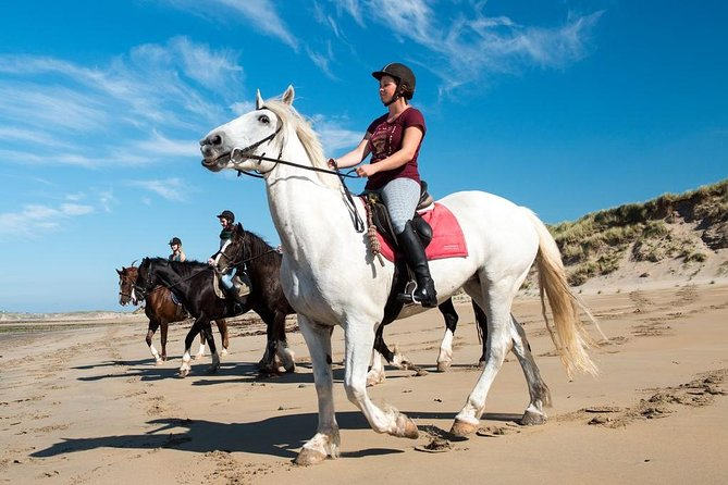 Private beach horseback riding in Connemara from Galway City. Guided. Full day