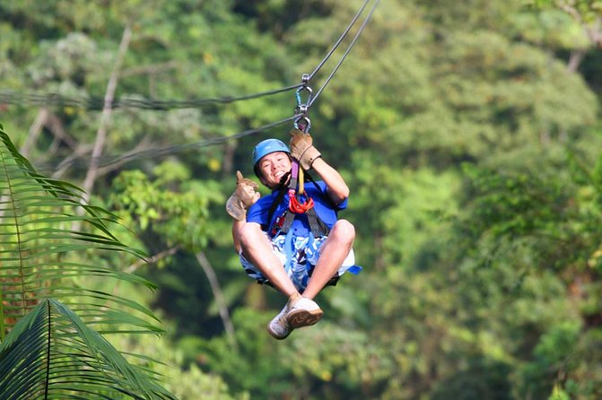 Rainforest Canopy Tour from San Jose photo 1
