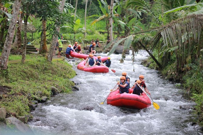 Bali Rafting with Ubud Tour