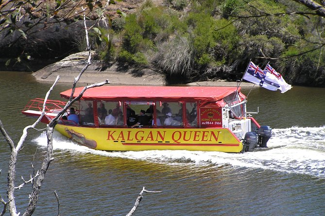 Kalgan Queen Scenic Cruises a four hour sheltered water wildlife tour daily fun.