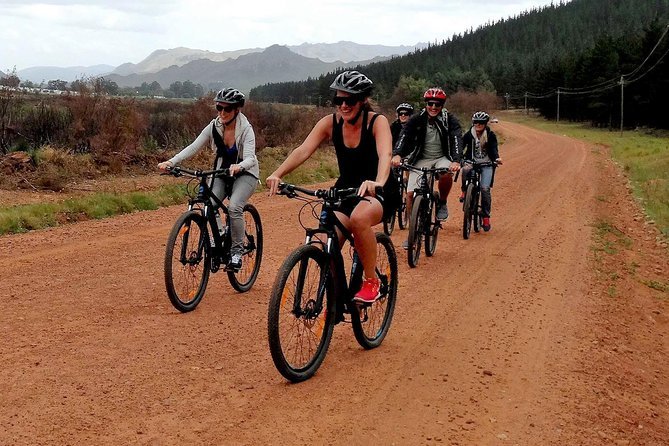 Stellenbosch Guided Winelands Cycle Tour photo 4