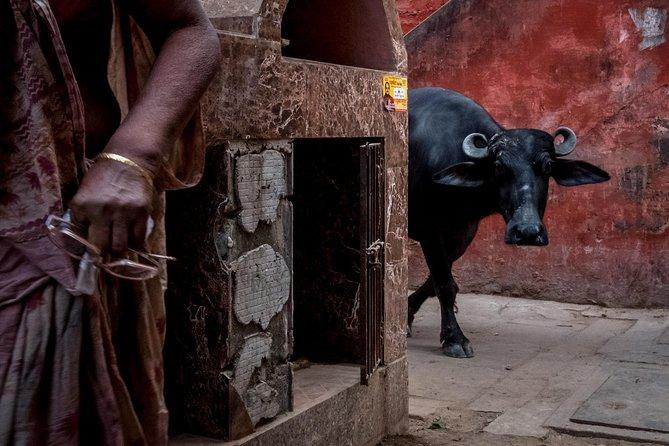 Varanasi Puzzled Alleys and Hidden Shrines